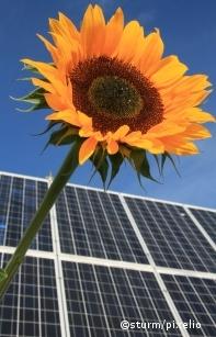 Kfw erneuerbare energien standard